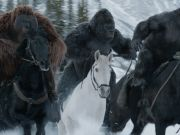 War for the Planet of the Apes showing in Rome cinemas