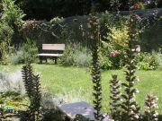 Rome's ecumenical garden