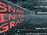 Snake in the Grass at Teatro S. Genesio