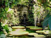 La Mortella Garden