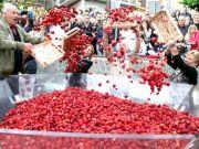 Nemi strawberry festival near Rome