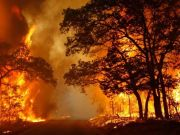 Lazio Region warns Rome area at risk of bushfires