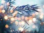 Netflix sponsors Rome's Christmas tree