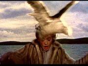 Hitchcock's The Birds at Nuovo Sacher cinema