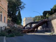 Rome's parks closed after strong winds batter city