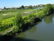Rome's riverside beach to reopen for summer