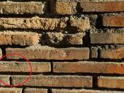 Tourist carves his name into Colosseum