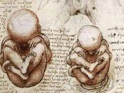 Leonardo da Vinci, a baby genius
