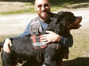 Amatrice bids farewell to Aaron the hero dog
