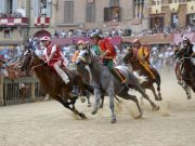 Siena cancels Palio horse race
