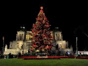 Spelacchio: Rome lights up Christmas tree in Piazza Venezia