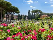 Rome plants hundreds of new roses in city's rose garden