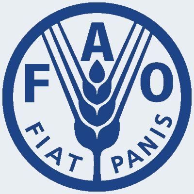 FAO launches new system to measure food insecurity - Wanted