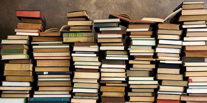Rome Library Gives Away Free Books Wanted In Rome